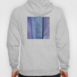 Lilac-esque and Aqua-Blue Feather Art Hoody