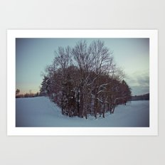Frozen forest. Art Print