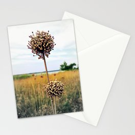 "Yorktown ""Onion"" Stationery Cards"