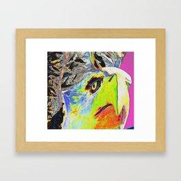 American Eagle Framed Art Print