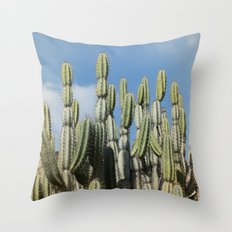 Desert Vibes Throw Pillow