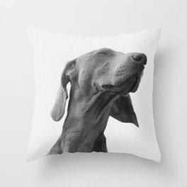 Dreaming dog Poster Throw Pillow