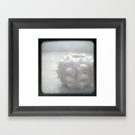 Lonely Urchin TTV Framed Art Print