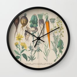 Garden Root Vegetables Vintage Illustration German Language Scientific Lithograph Diagram Wall Clock