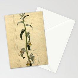 Flower 2253 digitatis orientalis Levant Fox Glove10 Stationery Cards