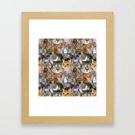 CATS!  Framed Art Print