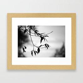 Some Twilight Framed Art Print
