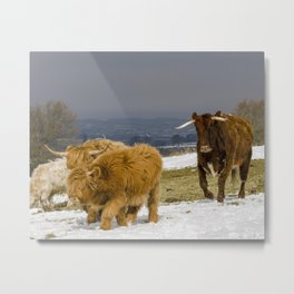 Bully And The Heeelans Metal Print