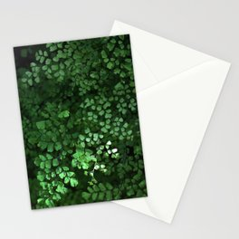 Maidenhair Stationery Cards