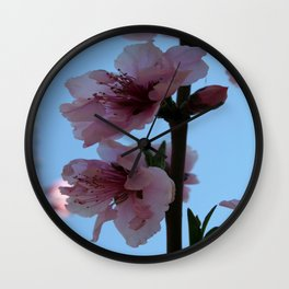 Pastel Pink of Peach Tree Blossom Wall Clock