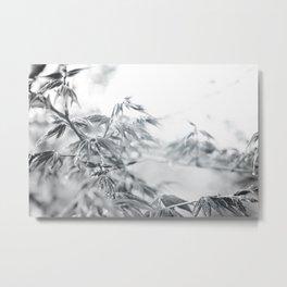 black and white fooliage Metal Print