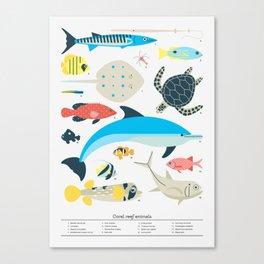 Coral reef animals Canvas Print