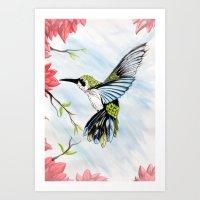 hummingbird Art Prints featuring Hummingbird by Noah Benjamin Krogh