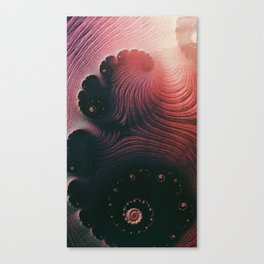 Birth Canvas Print