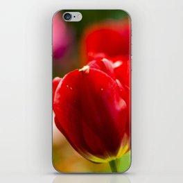 Bold Tulips iPhone Skin