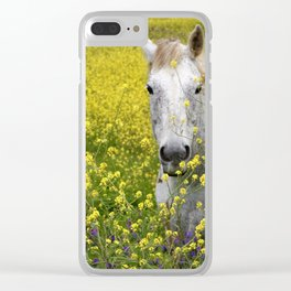 White Horse in a Yellow Pasture Clear iPhone Case