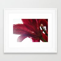 ruby Framed Art Prints featuring Ruby by Dominique Gwerder