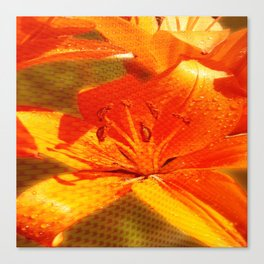 Orange Lilies with Texture 01 Canvas Print