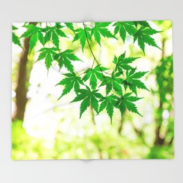 Green leaves of Japanese maple Throw Blanket