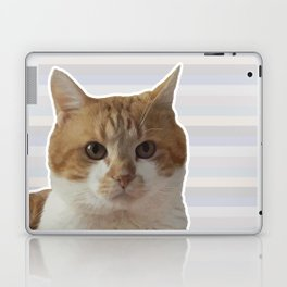 Red cat on a striped background. Laptop & iPad Skin