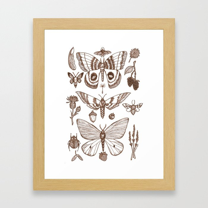 Natural History (Brown) Framed Art Print
