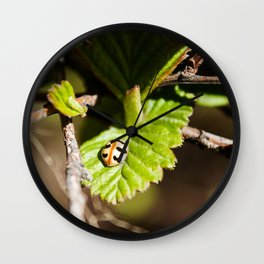 Little Ladybug Photography Print Wall Clock