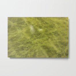 Green around the gills Metal Print