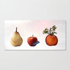 airmail (Birnenbonsai) Canvas Print