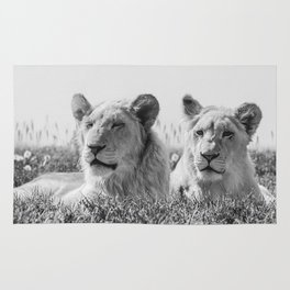 Lion Photography | Cubs | Twins | Love | Animal Rug