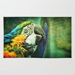 Ara Parrot Rug