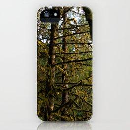Golden Trees - Oregon iPhone Case
