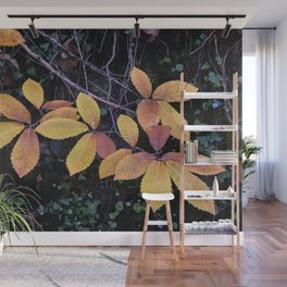 Autumn Colors. Into The Wet Woods Wall Mural