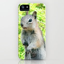 Watercolor Golden-Mantled Ground Squirrel 03, Gem Lake Trail, RMNP, Colorado, Where'd Everybody Go? iPhone Case