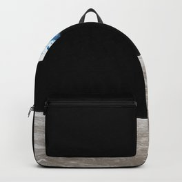 Earthrise William Anders Backpack