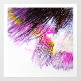 Paintbrush Bristles Macro Photography Art Print