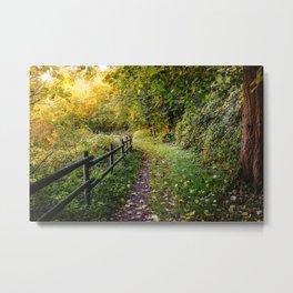 An Autumn Walk Metal Print