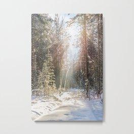 Sunny winter day Metal Print