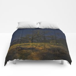 Under Starry Sky Comforters