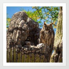 Elf Owl Family Art Print