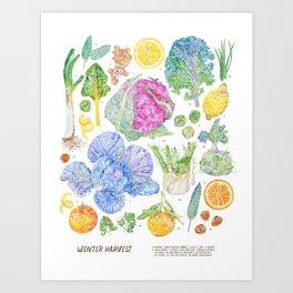 Winter Harvest Art Print