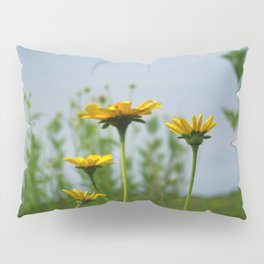 Reaching for the sky - prairie Heliopsis Pillow Sham