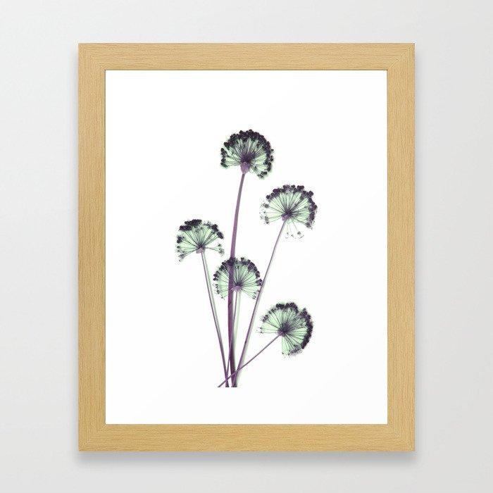 blue and pink flowers . wallpaper , flower decor, printable art Framed Art Print