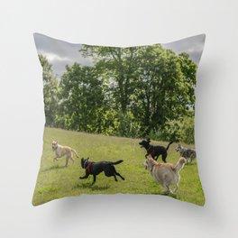 dog fun Throw Pillow
