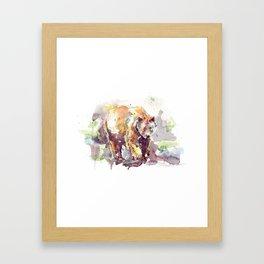 spirit bear / kermode Framed Art Print
