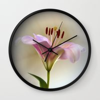 lily Wall Clocks featuring Lily by Brian Raggatt