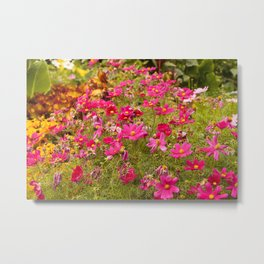 Royal Gardens Metal Print