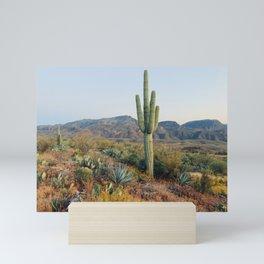 Spring in the Desert Mini Art Print