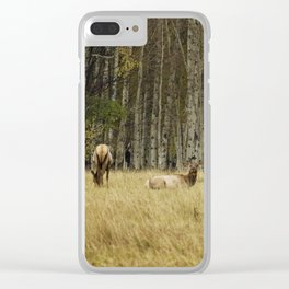 Cow Elk Resting - Grand Tetons Clear iPhone Case