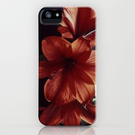Three red flowers iPhone Case