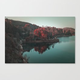 Red Trees Canvas Print